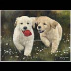 Puppy Talk (Sold)