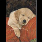 Tired Out (New!) SOLD